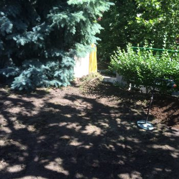 kertépítés, kertátépítés, gyepszőnyeg